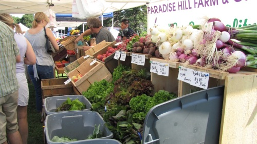 The local harvest arrives Saturdays at the Aquidneck Growers' Farmers' Market in Middletown, RI.