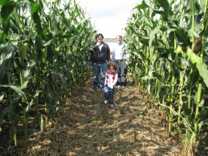 Heading into the corn maze on Schartner Farms.