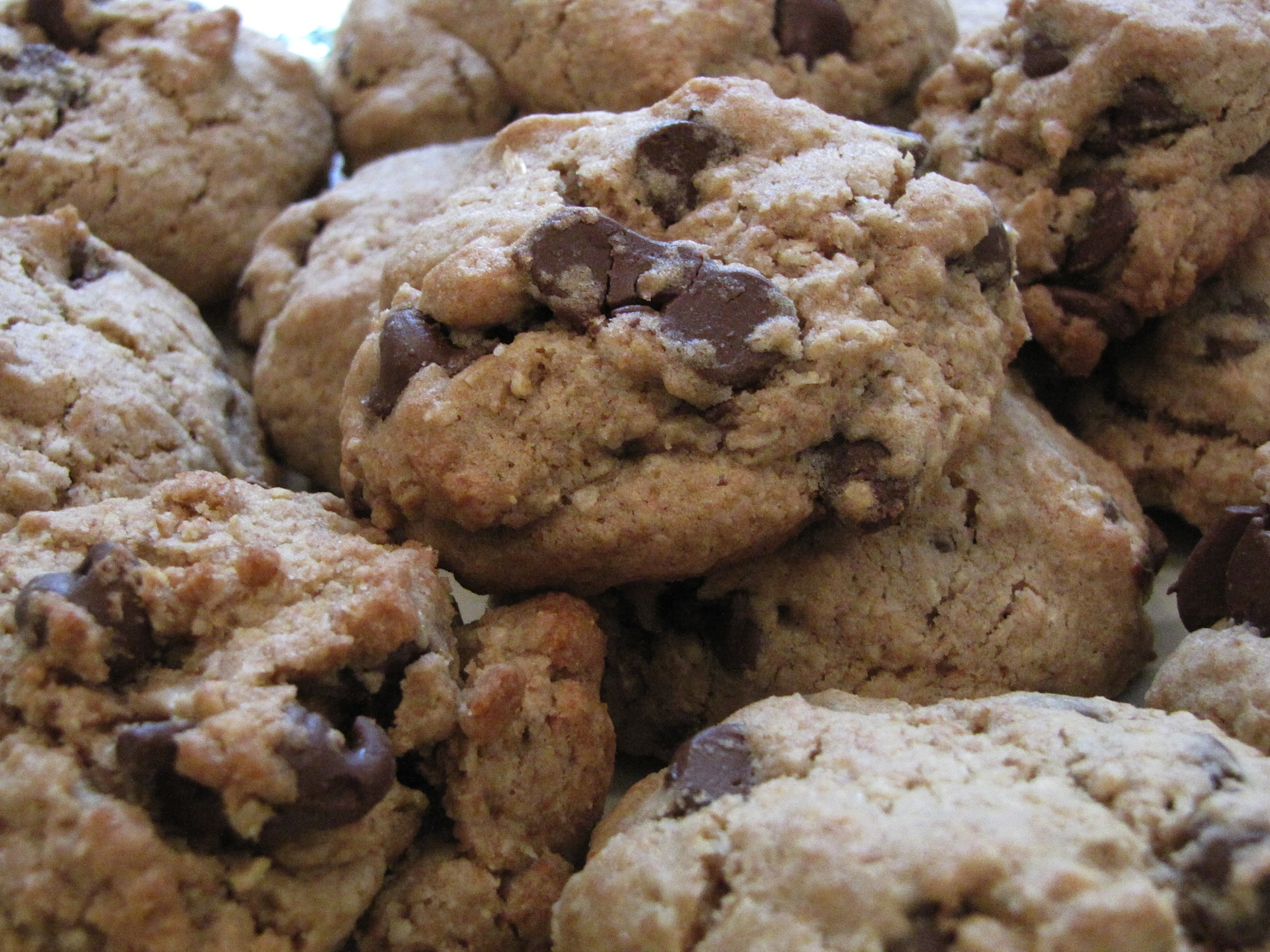 Whole Wheat Oatmeal Chocolate Chip Cookies | The Rhode Less Traveled ...