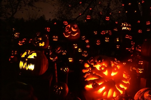 A photo from the 2012 Jack-O-Lantern Spectacular.
